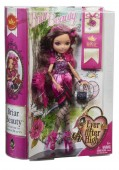 Ever After High Briar Beauty Papusi rebele cu accesorii BFX27 (cu suport)